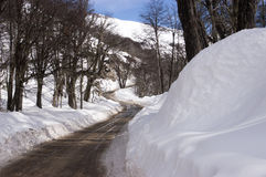 Road with snow Royalty Free Stock Photos