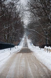 Road in the snow Stock Image