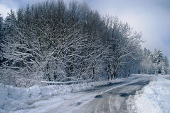 Road in snow Stock Images