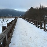 Road with Snow. Wooden road and the snow Stock Photo