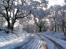 Road after snowfall stock photos