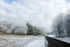 Road in snowy countryside Stock Images