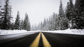 Road through snowy forest Royalty Free Stock Images