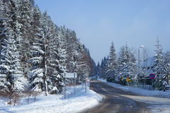 The road in the snowy forest Royalty Free Stock Images