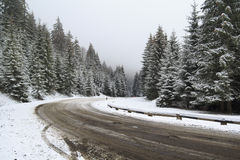 Road in Snowy Forest Stock Photography
