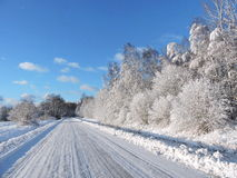 Road and snowy  trees, Lithuania Stock Photos