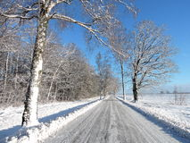 Road and snowy  trees, Lithuania Stock Photo