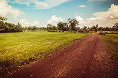 Road soil royalty free stock images
