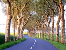 Road to the south of France royalty free stock photography