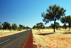 A road through spinifex plains Royalty Free Stock Photo