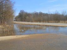 Road in spring. stock photo