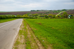 Road in the spring countryside Royalty Free Stock Image