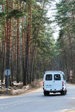 Road in spring forest Royalty Free Stock Photography