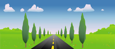 Road in the springtime Royalty Free Stock Photography