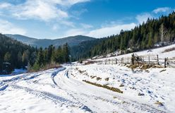 Road through spruce forest in winter. Lovely countryside on a sunny and frosty day Stock Image