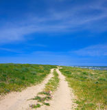 Road in steppe Royalty Free Stock Image