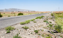 The road through the steppe Royalty Free Stock Photography