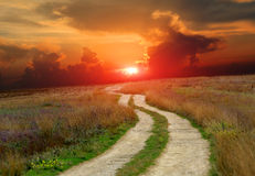 Road in steppe against sunset Royalty Free Stock Photos