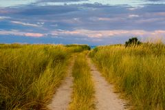 Road in steppe stock images