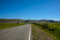 Road among the steppe and hills Stock Image