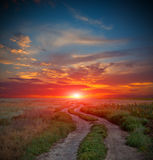 Road in steppe on sunset time Stock Photography