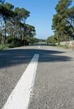 Road. With stone walls, pine tress, Mallorca, Spain Stock Image