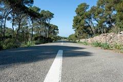 Road. With stone walls, pine tress, Mallorca, Spain Royalty Free Stock Photo