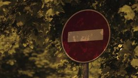 Road stop sign at night beneath foliage. stock footage