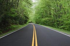 road straight στοκ εικόνες