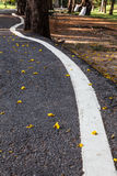 Road street or asphalt texture with curve lines Royalty Free Stock Photo