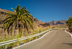 Road through the stunning Gran Canaria landscape Stock Photos