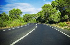 Road in summer. Royalty Free Stock Image