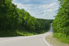 Road in summer forest. Landscape with a road in the spring forest Stock Images
