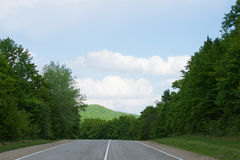 Road in summer forest. Landscape with a road in the spring forest Royalty Free Stock Images