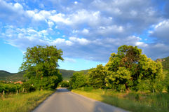 Road in summer lowland Royalty Free Stock Photos