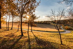 Road through sunny autumnal evening landscape with colorful tree Royalty Free Stock Image