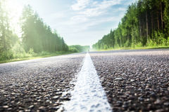 Road in sunny forest (shallow DOF) Royalty Free Stock Image