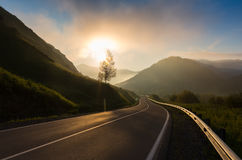 Road in sunrise time, Ailai mountains, Russia Stock Image