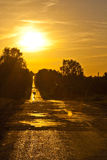 Road and sunset. Country road at summer sunset Stock Photography