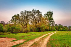 Road in sunset field Royalty Free Stock Image