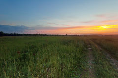 Road in sunset field Royalty Free Stock Photography