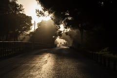 Road at sunset Stock Photos