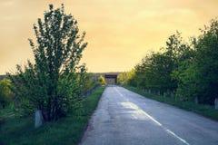 Road at sunset. Summer. Travels. Landscape Recreation Stock Image