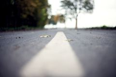 Road Surface Marking Stock Photography