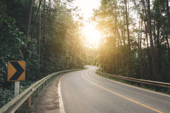 Road is surrounded by pine trees forest to the flare light of the sun. Vintage tone Stock Photography