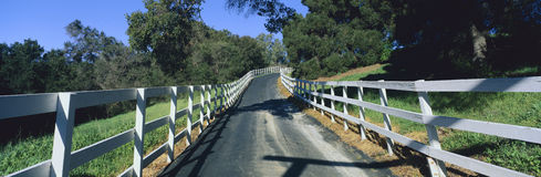 Road surrounded by white picket fence Stock Photos