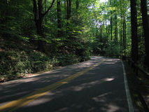 The Road Less Taken. Road through the Cleveland Metroparks Royalty Free Stock Image
