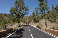 Road in Teide National Park, Tenerife Stock Image
