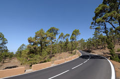 Road in Teide National Park, Tenerife Royalty Free Stock Images