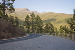 Road on Tenerife. Road in the mountains of Tenerife island, Spain Royalty Free Stock Images